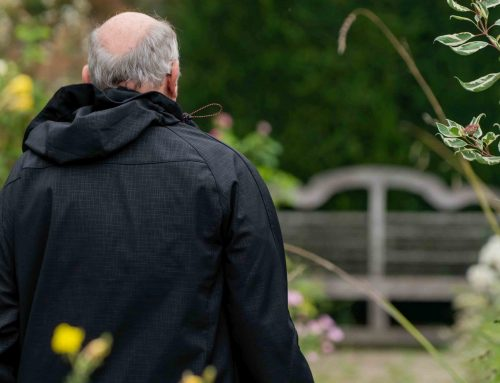 How to create a low maintenance garden for the elderly that attracts wildlife