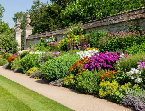 6 great picnic places for the elderly in and around Oxfordshire